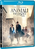 Animali fantastici e dove trovarli (Blu-Ray Disc)