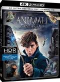 Animali fantastici e dove trovarli (Blu-Ray 4K UHD + Blu-Ray Disc)