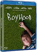 Boyhood (Blu-Ray Disc)