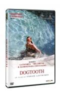 Dogtooth