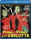 Piano... piano, dolce Carlotta (BD-R, Blu-Ray)