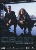 CSI New York - Stagione 1, Vol. 2 (3 DVD)