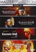 Karate Kid - Quadrilogia (4 DVD)
