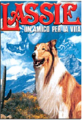Lassie, un amico per la vita