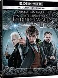 Animali Fantastici - I crimini di Grindelwald (Blu-Ray 4K UHD + Blu-Ray)