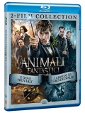 Animali Fantastici Collection (2 Blu-Ray)