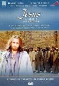 Videocatechismo - Professione di fede, Vol. 4