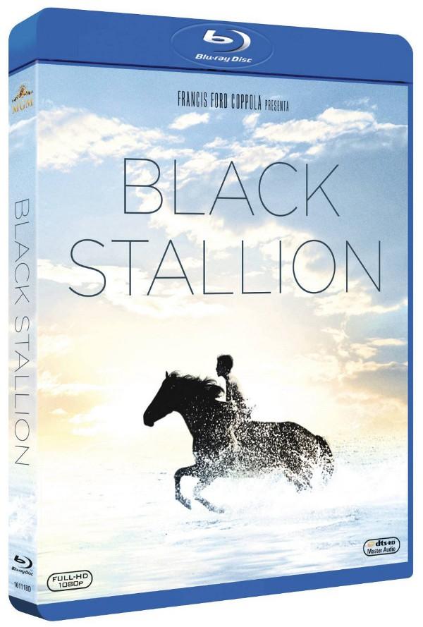Black Stallion al galoppo verso l'Italia!