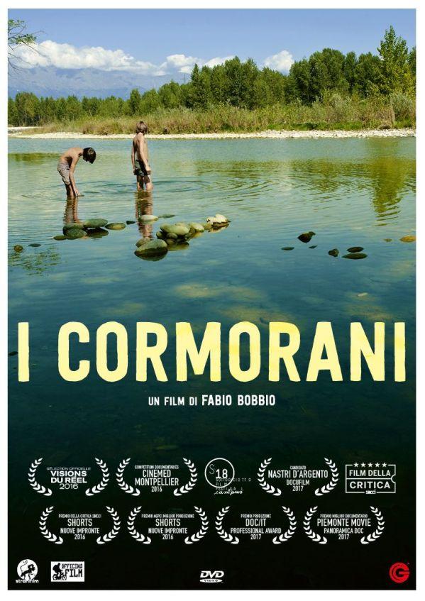 I Cormorani spiccano il volo!