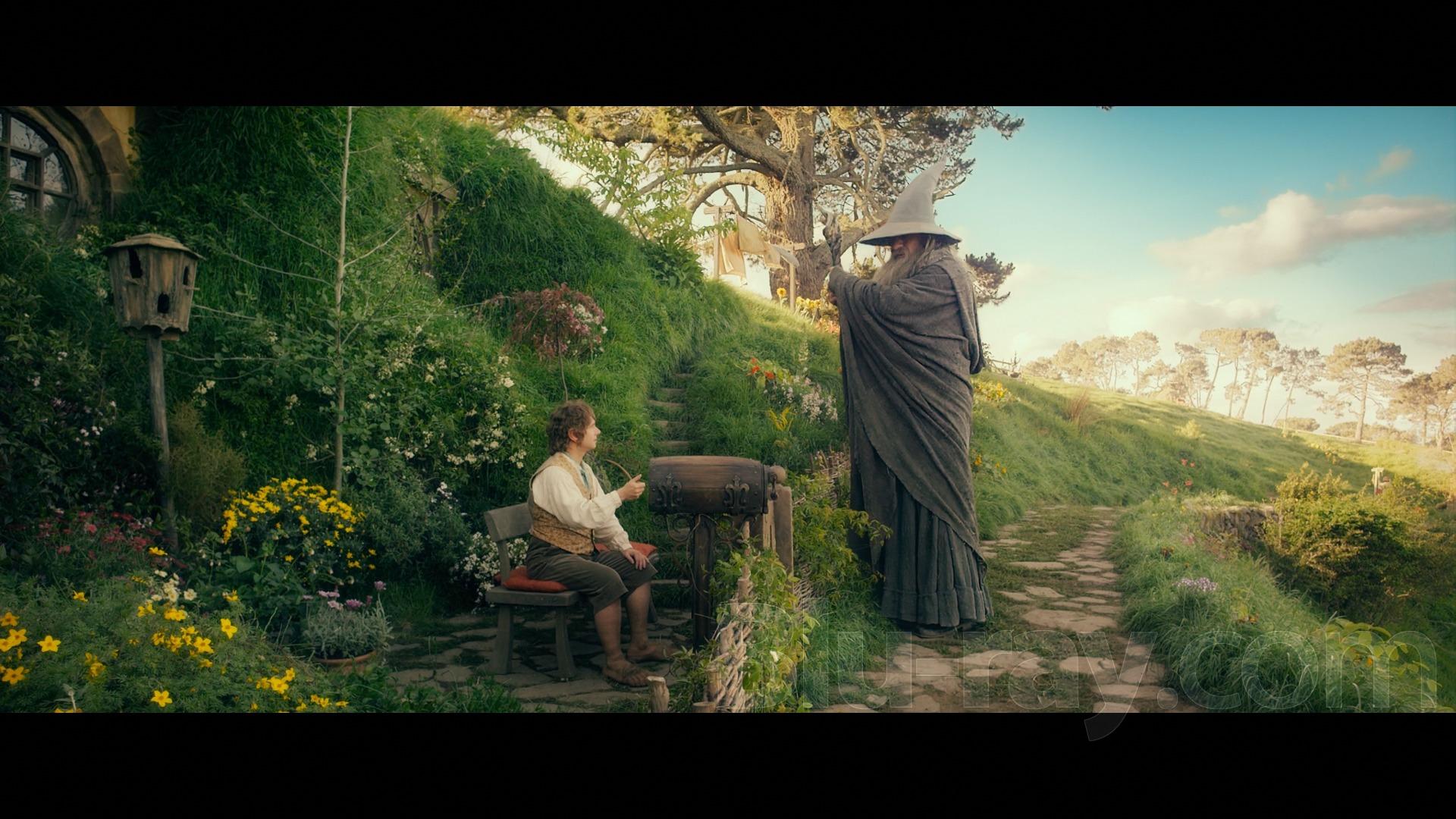 Blu-Ray.com recensisce Lo Hobbit 2D!