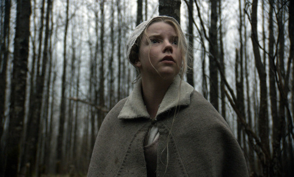 The Witch: l'Ombra della Strega!
